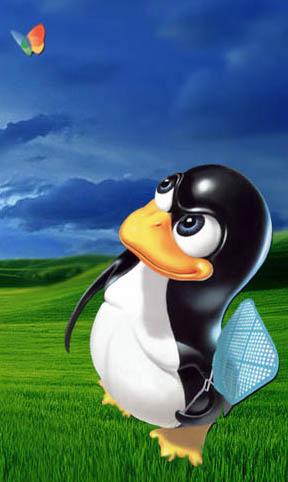 penguin-versus-jendela